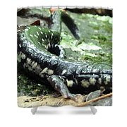 Appalachian Slimy Salamander Shower Curtain