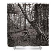Appalachian Trail Shower Curtain