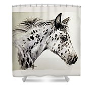 Appaloosa Shower Curtain