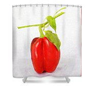 Appetite - Id 16235-220446-5438 Shower Curtain