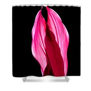 Flowery Applause Shower Curtain