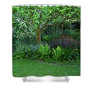Apple And Fern Shower Curtain
