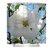 Apple Blossoms Art Prints Canvas Spring Tree Blossom Baslee Troutman Shower Curtain