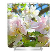 Apple Blossoms Art Prints Spring Trees Baslee Troutman Shower Curtain