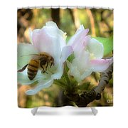 Apple Blossoms With Honey Bee Shower Curtain