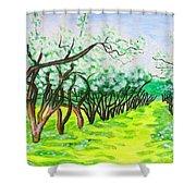 Apple Garden In Blossom Shower Curtain