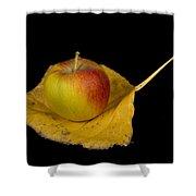Apple Harvest Autumn Leaf Shower Curtain