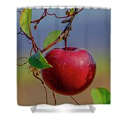 Apple On A Tree Shower Curtain