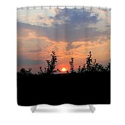 Apple Orchard Silhouette Shower Curtain