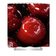 Apple Perfection Shower Curtain