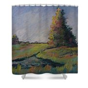 Apple Pond Shower Curtain