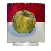 Apple Study Shower Curtain