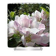 Apple Tree Blossoms Art Prints Baslee Troutman Shower Curtain