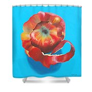Apple Twist Shower Curtain