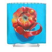 Apple Twist Shower Curtain