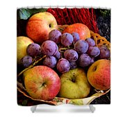 Apples And Grapes Shower Curtain