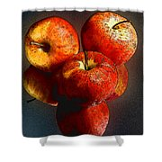 Apples And Mirrors Shower Curtain by Paul Wear