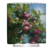 Apples And Sky Shower Curtain