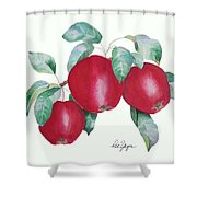 Apples In Autumn Shower Curtain