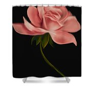 Apricot Beauty Rose Shower Curtain