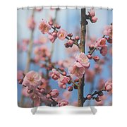 Apricot Blossom Shower Curtain