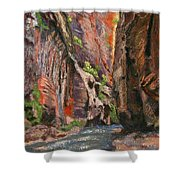 Apricot Canyon 2 Shower Curtain