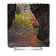 Apricot Canyon Shower Curtain
