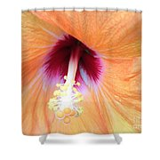 Apricot Hibiscus Flower Shower Curtain