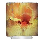 Apricot Iris Shower Curtain