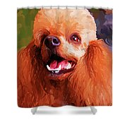 Apricot Poodle Shower Curtain