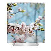 Apricots Bloom Shower Curtain