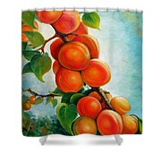 Apricots In The Garden Shower Curtain