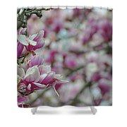 April Blossoms Shower Curtain