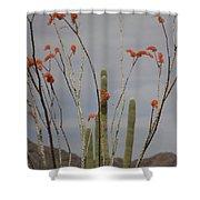 April Shower Curtain