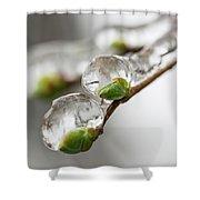 April Ice Storm 5 Shower Curtain
