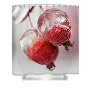 April Ice Storm Apples Shower Curtain
