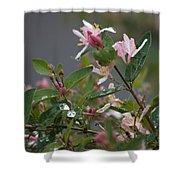 April Showers 7 Shower Curtain