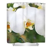 Aqua Lilies Shower Curtain