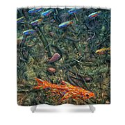 Aquarium 2 Shower Curtain by James W Johnson
