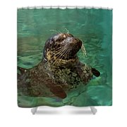 Aquarium Seal  Shower Curtain