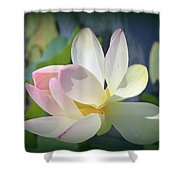 Aquatic Nymph - Waterlily Shower Curtain