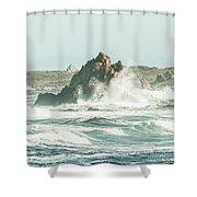 Aquatic Spray Shower Curtain