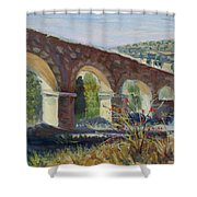 Aqueduct Near Pedraza Shower Curtain