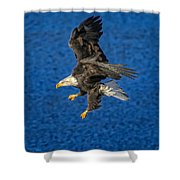 Aquila Shower Curtain