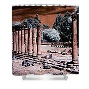 Aquileia, Roman Forum Shower Curtain by Helga Novelli