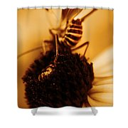 Arabesque - Gold Shower Curtain