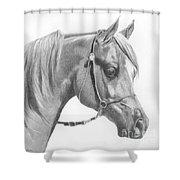 Arabian 2 Shower Curtain