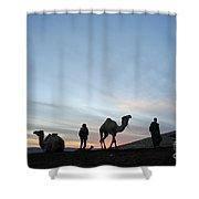 Arabian Camel At Sunset Shower Curtain