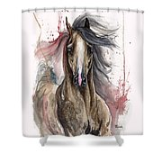 Arabian Horse 2013 10 15 Shower Curtain