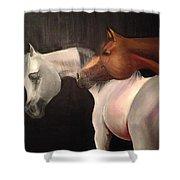 Arabian Horses Shower Curtain